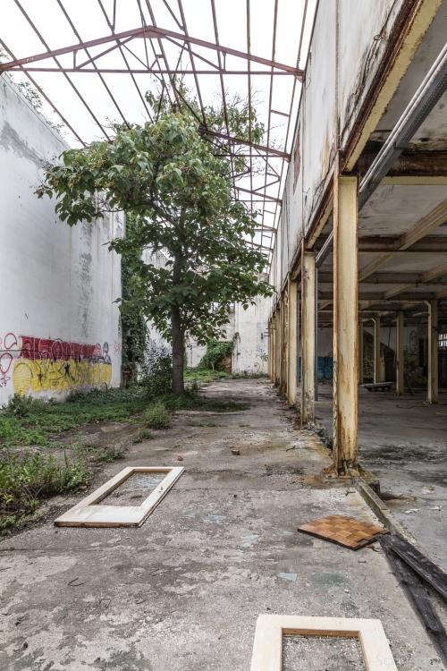 abandoned_21_01
