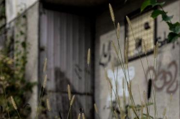 abandoned_30_10