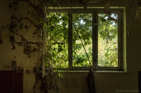 abandoned_32_01