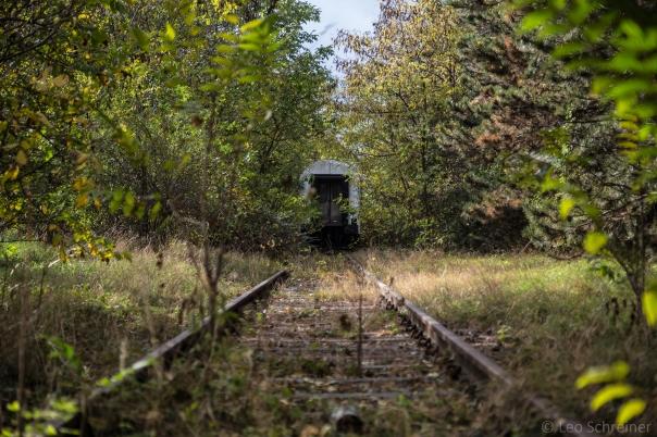 abandoned_39_16